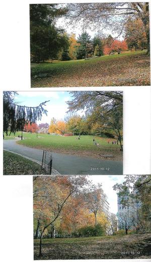 New_york_central_park_2